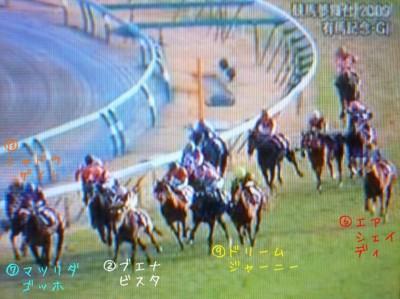 有馬記念2009 (6)