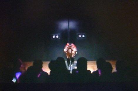 AKB48前田敦子卒業公演 (42)