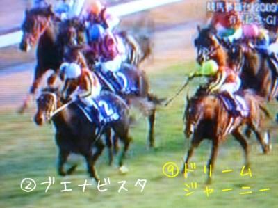 有馬記念2009 (7)