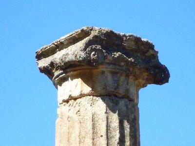 1233イオニア式の柱
