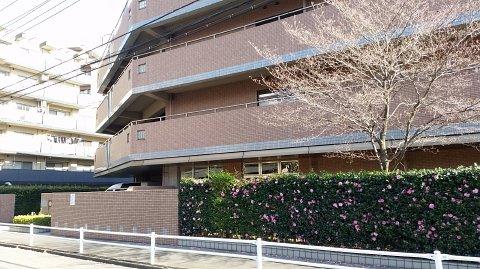 aa6c0cacf111d0 府中市にあるんだけど、新宿区が契約している特養です。