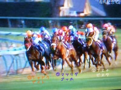 有馬記念2009 (5)