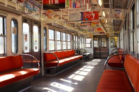 西武多摩川線さよなら101系 (9)