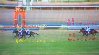 有馬記念2009 (14)