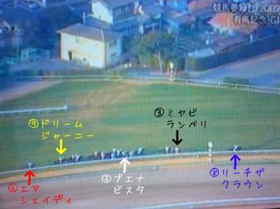 有馬記念2009 (2)