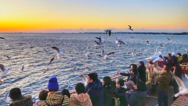 浜名湖遊覧船:初日の出クルーズ