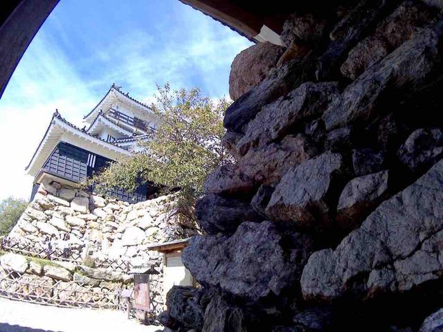 浜松城 野積石