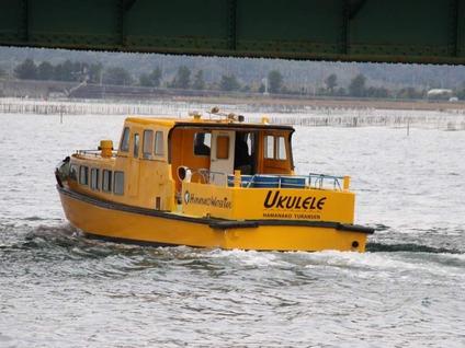 水上交通ウクレレ