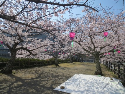 桜花見浜松城