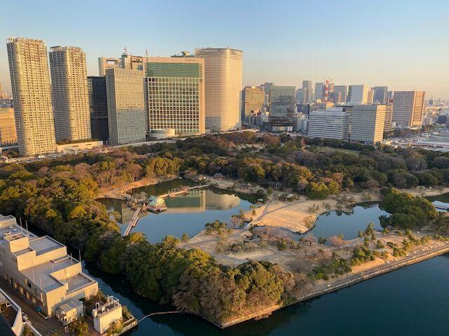 20210120メズム東京08