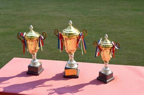 trophy-83115_640