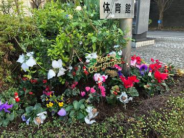 クリスマスの花壇