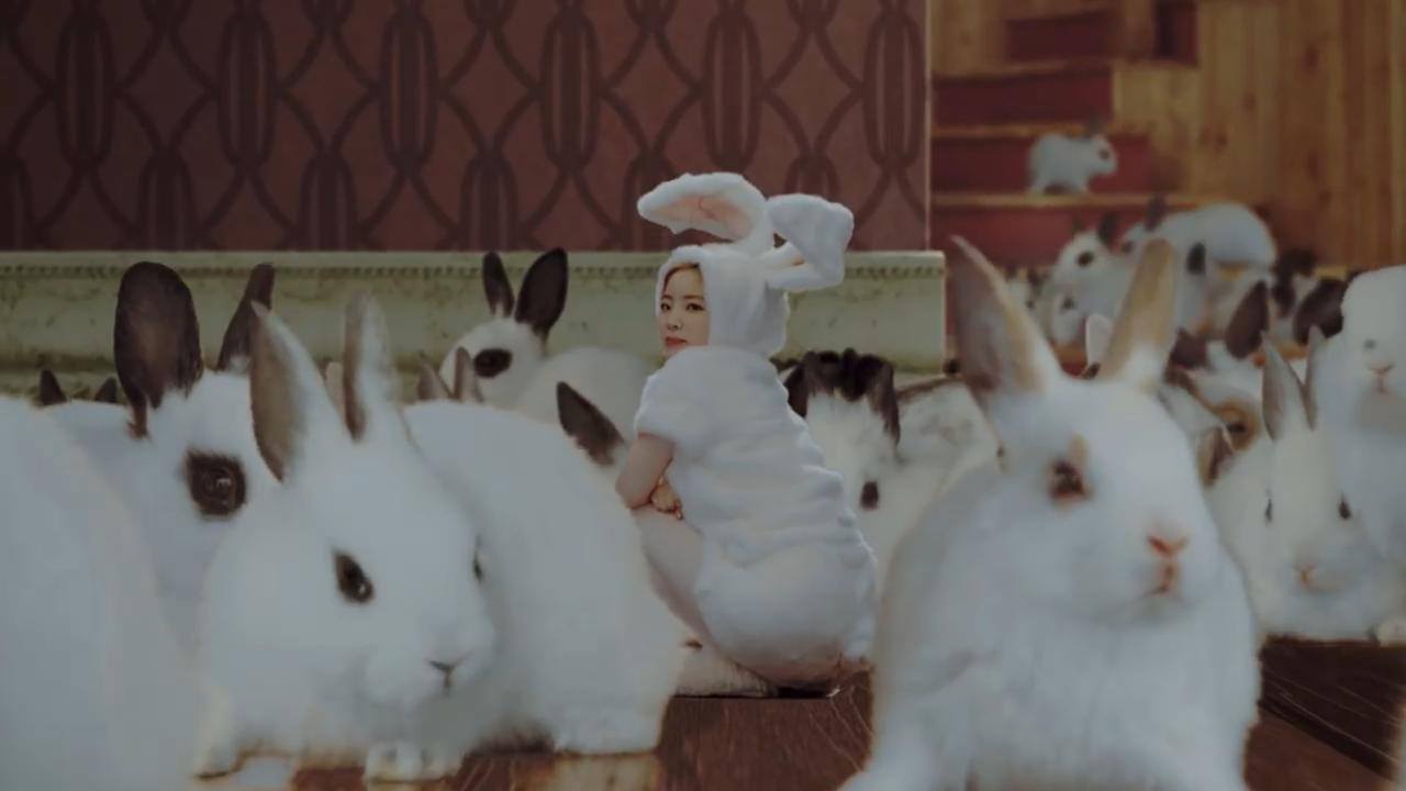ダヒョンは、見ての通りウサギです。 ダヒョンの元気なイメージにぴったり。
