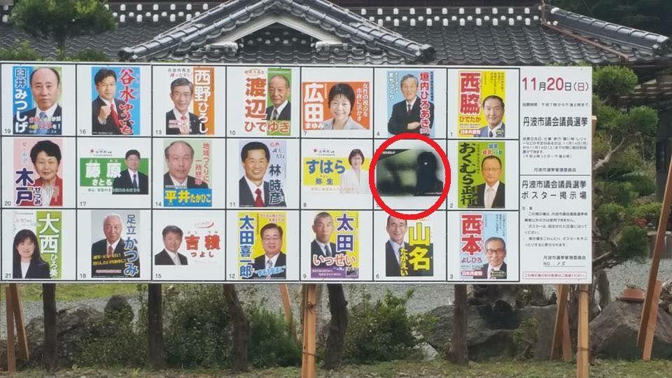丹波 市 選挙