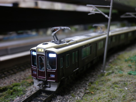 IMGP6076