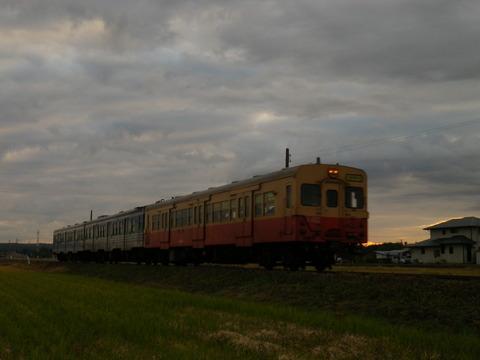 IMGP8844