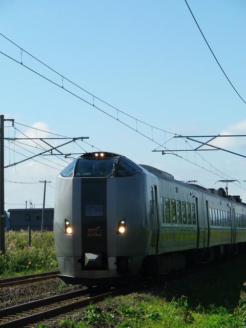 IMGP8384