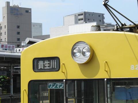 IMGP7813