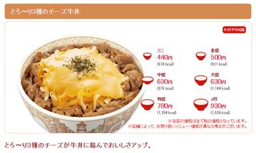 とろ〜り3種のチーズ牛丼