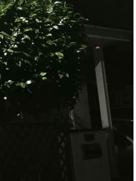 岡くんハウス監視カメラ1