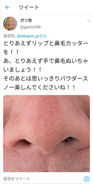 堀江貴文鼻毛1