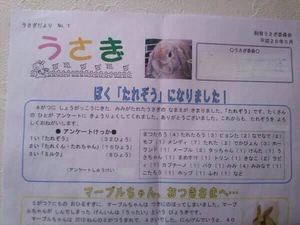 Usagi ユーチュー バー アンチ 75