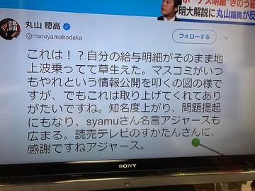 syamu丸山穂高