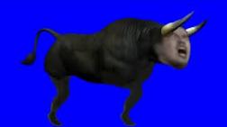 野獣先輩牛