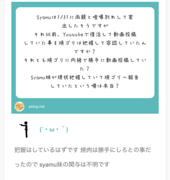 syamuエアガンニキ12