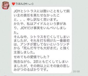 山田香織うさぎJOYシトラス
