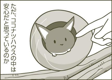 160809_デグーの館_漫画ベース4-10