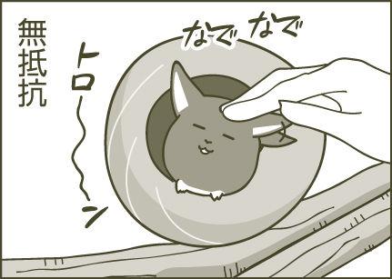 160809_デグーの館_漫画ベース4-11
