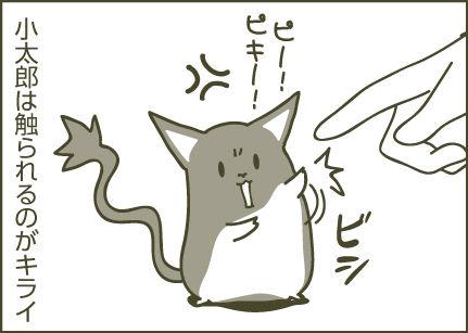 160809_デグーの館_漫画ベース4-09