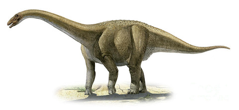 rapetosaurus-krausei-a-prehistoric-era-sergey-krasovskiy