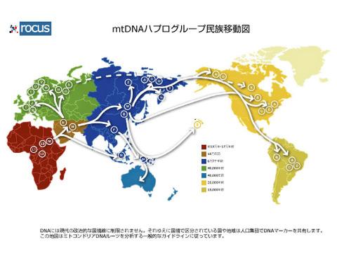 mtDNA-Map