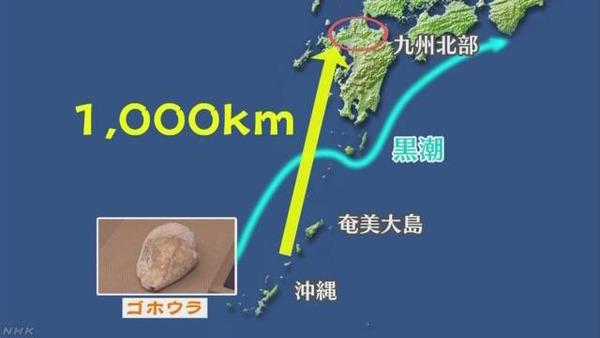 web_tokushu_2018_1114_img_11