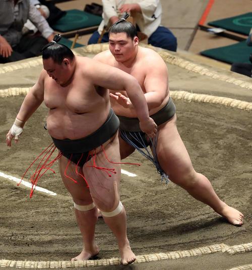 2ch大相撲 : 貴闘力 元妻から「余計なことをしゃべるな。子供が迷惑 ...