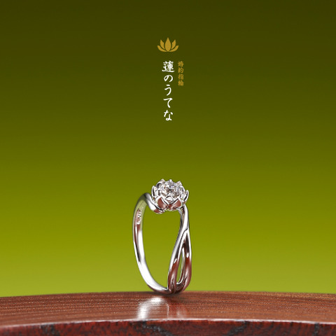 婚約指輪:蓮のうてな