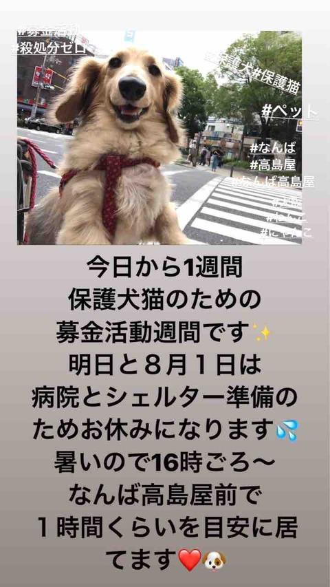 IMG_4033