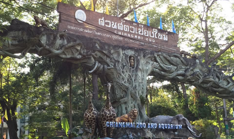 チェンマイ動物園入口2