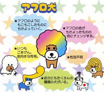 20120704_kitty_49