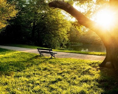 Summer-morning-in-the-park-bench-trees-grass-sunlight_1280x1024