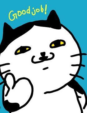 11_02_24_cat