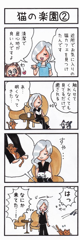 195猫の楽園②