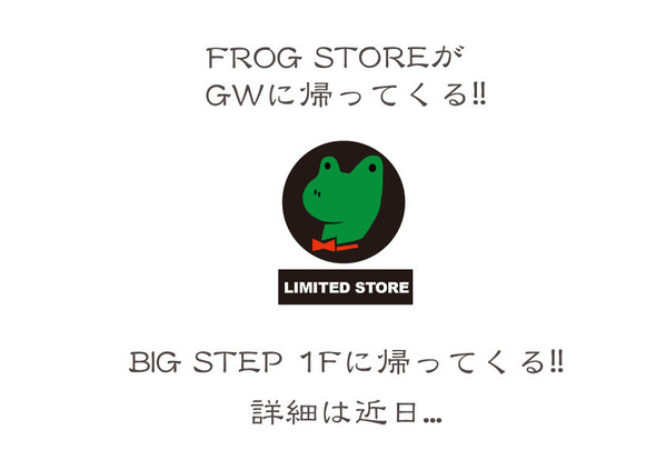 2016-frog-store-A6FLYER