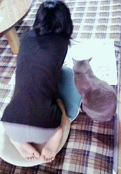 新聞を読みましょう。