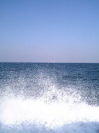 佐久島にて釣り編。
