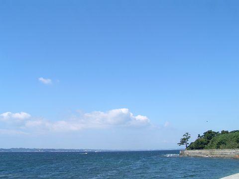 ニャーゴ島オフ。