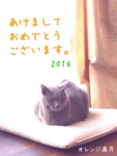 今年もよろしくおねがいします。