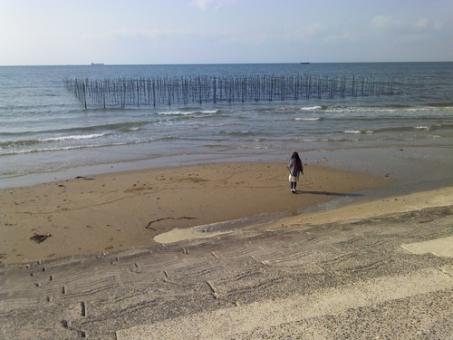 冬の海っていい。